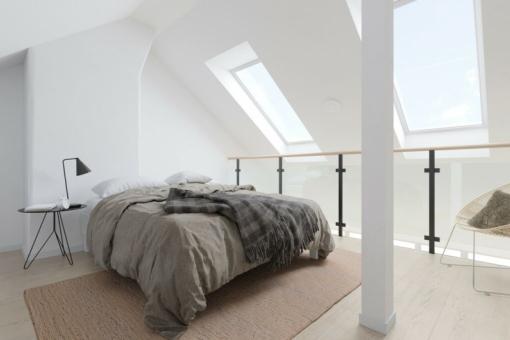 renovatiepremie dak